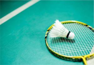 Le badminton : histoire regles et materiel